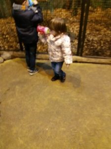 MAM beker dierentuin