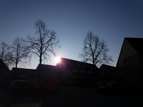 dagboek zon